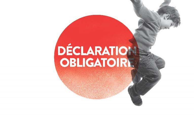 Rapport Annuel 2011 - Déclaration obligatoire